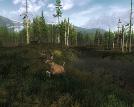 kostenloser Jagd simulator