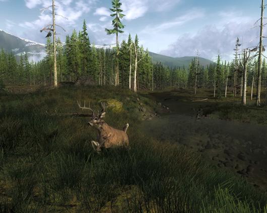 kostenloses Wildnis Jagd Spiel